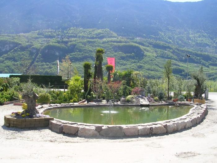 Stefans garden gardiniera salorno alto adige for Piccoli stagni da giardino
