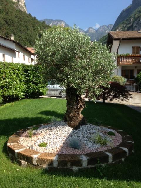 Progettazione piccoli giardini privati idea creativa for Progettazione della casa territoriale